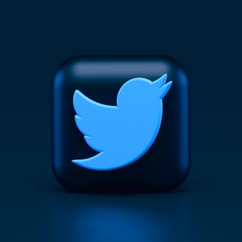 A Fleeting Moment for Twitter - Modo25